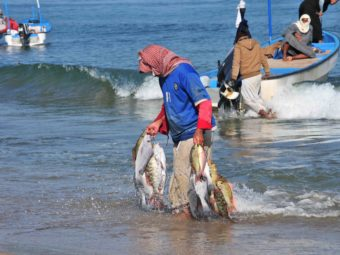 Oman: Fishermen in Dhofar advised not to go to sea as weather front approaches